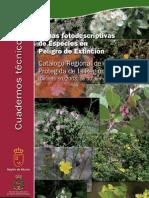 Cuaderno especies extincion