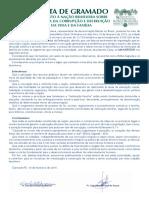 A Carta de Gramado - Manifesto a Nacao Brasileira