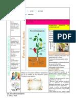 PLANTASS.docx