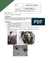 Informe N°01.2015