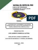 TESIS DE POSGRADO MINAS.pdf
