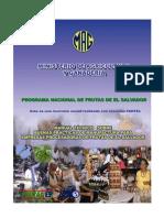 BPM empresas procesadoras de frutas.pdf