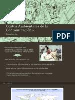 2080. Costos Ambientales de La Contaminación