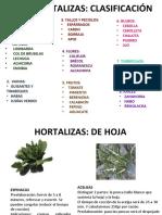 776hortalizas-121109203355-phpapp01