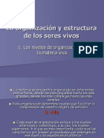 BT4.1 Niveles Organizacion