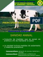 14 Principios de Sanidad Animal