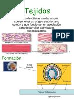 Generalidades y Uniones Celulares