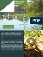 laguna-de-carpintero.pdf