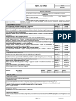 Ejemplo perfil de cargo