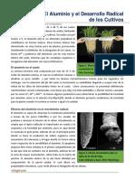 49. El Aluminio y El Desarrollo Radicular de Los Cultivos