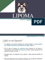 LIPOMA