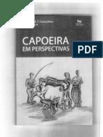 Capoeira - Em perspectivas.pdf
