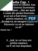 Obadi_01+