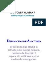 Terminologia Anatomica 1 2