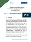 Informe Nº02 Impacto Ambiental Checca - Mazocruz