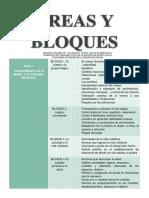 ÁREAS Y BLOQUES.docx