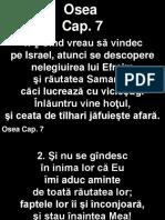 Osea_07+