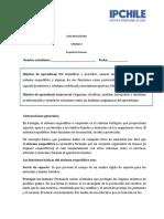 PROFE ELI (1) (1)
