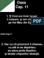 Osea_11+