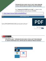 SIAF&SEACE Manual Web