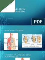 Virus Pada Sistem Muskuloskeletal