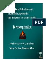 13_Termoquimica.pdf