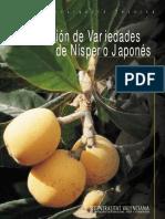 Nispero Variedades