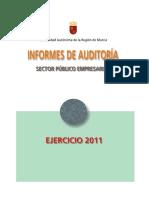 104495-Informes de Auditorias 2011
