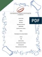 Informe_Metodologias de Los Sistemas Blandos_Yesica Takamura