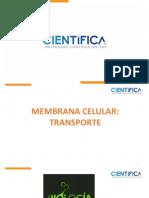 MEMBRANA CELULAR TRANSPORTE