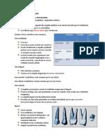Resumen anatomía dentaria