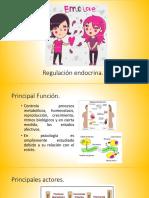 Repaso Sistema Endocrino