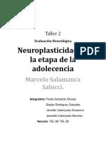 Desarrollo Del Cerebro en La Adolescencia