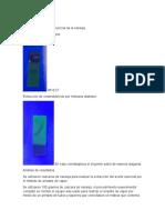 ACEITE ESCENCIAL.docx