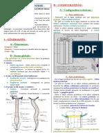 Anatomie06.pdf