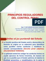 Principios Del Control Penal