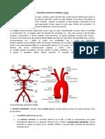 Patologie Vascolari Cerebrali