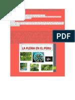 Flora y Fauna de Nuestra Sierra Peruana