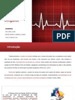 Projeto Terapêutico Singular - PDF