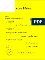 Algebra Básica.