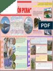 Cultura Ambiental 2.docx