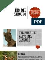 Salto Del Canguro