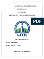Renovación y Reparación Tisular