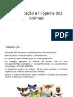 Classificação e Filogenia Dos Animais