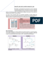 Cromatografía de Exclusión Molecular Informe Final (1)