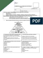 PRUEBA BIMENSUAL CIENCIAS NATURALES UNIDAD 1 8 BASICO.docx
