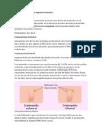 Malformaciones de migración testicular