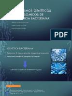 Mecanismos Genéticos Cromosómicos de Resistencia Bacteriana