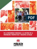 Libro seguridad ciudadana.pdf