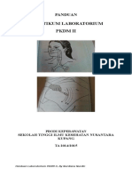 PANDUAN LAB PKDM II.rtf